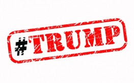 The Trump Administration Successes & Failure During The First Term